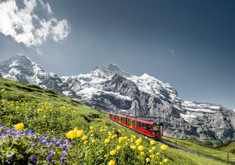 Switzerland in Summer