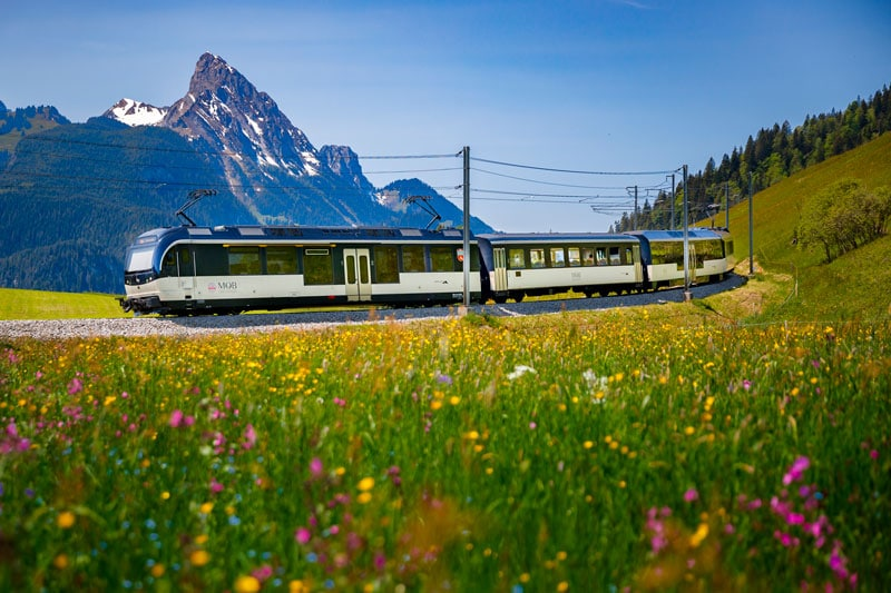 GoldenPass Line train near Schonried