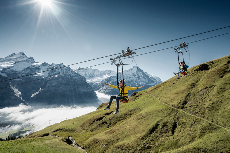 First Flyer Grindelwald