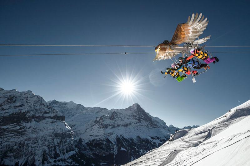 First Glider Grindelwald