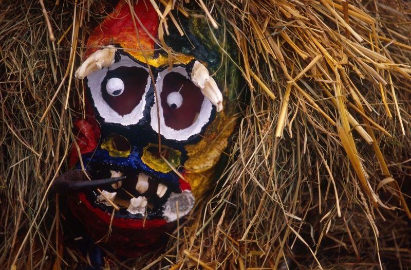 Mummer's Procession mask