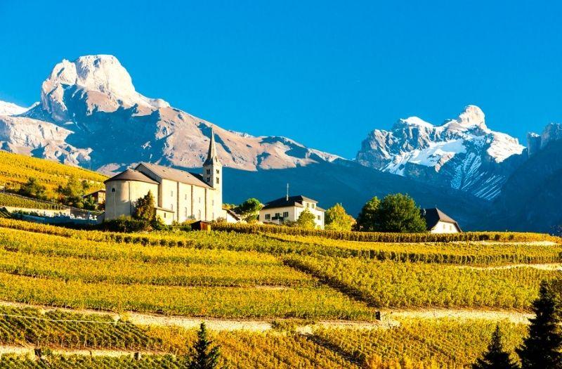 Vineyards near Sion in canton Valais