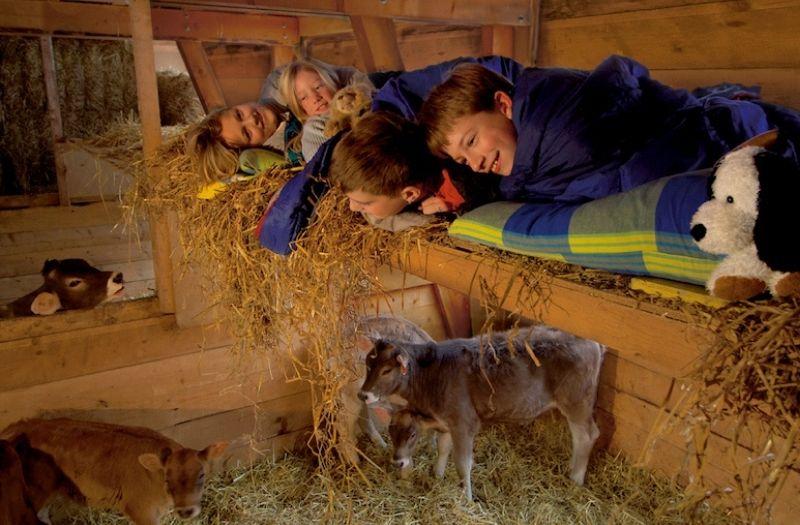 Sleep on straw in Switzerland
